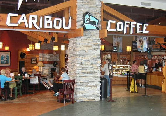 about tellcaribou com